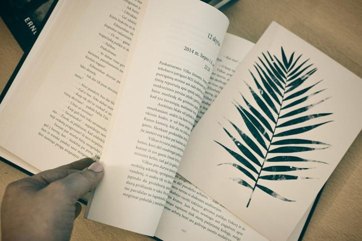 kovo knygos | Grožio blogas