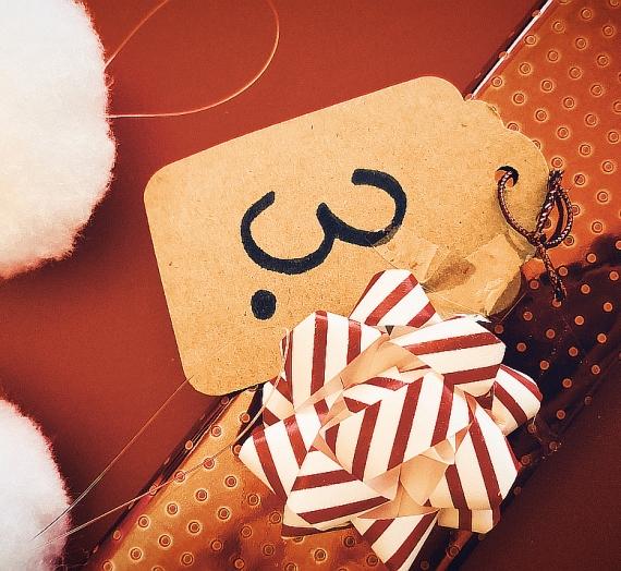 Advento kalendorius (3): Salomėja, o ko tu paprašytum Kalėdų senelio?