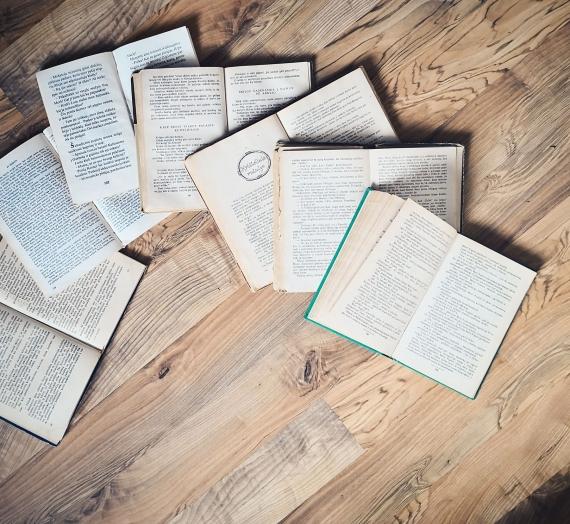 Knygų apžvalga. Vasaris 2019